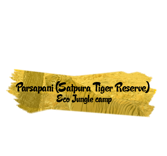 Parsapani (Satpura Tiger Reserve) - Eco Jungle camp